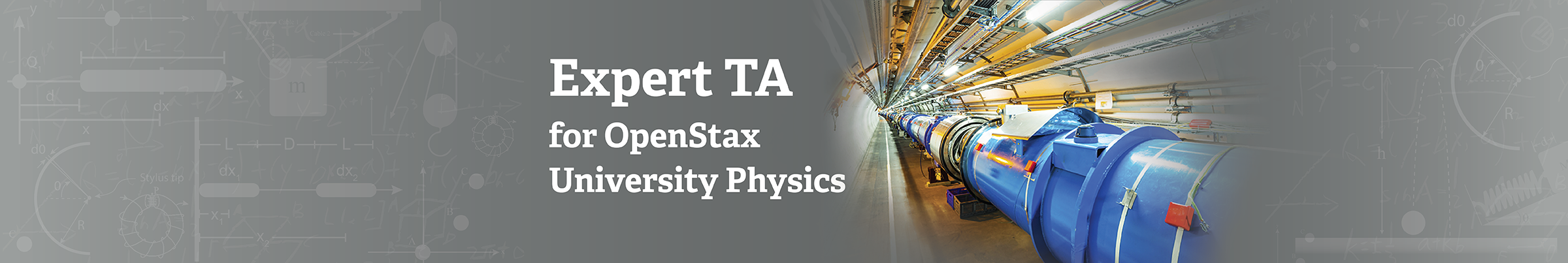 The Expert TA – University Physics